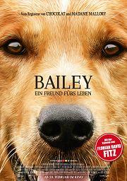 Alle Infos zu Bailey - Ein Freund fürs Leben