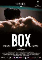 Alle Infos zu Box
