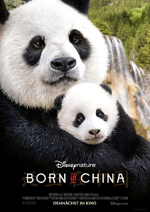 Alle Infos zu Born in China