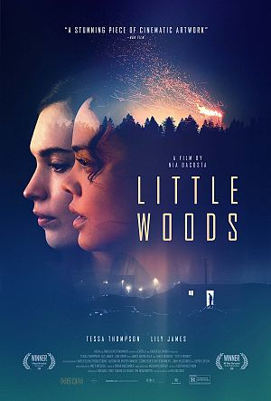 Alle Infos zu Little Woods