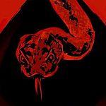 """Neuer Netflix-Trailer: """"Der Biss der Klapperschlange"""" schockt"""