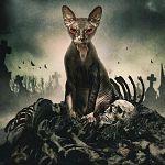 """Nimm das, Stephen King! """"Pet Graveyard""""-Trailer ausgebuddelt"""