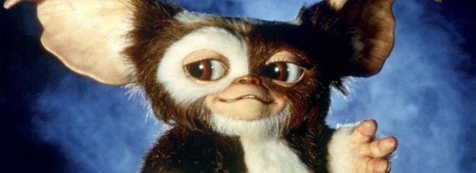 "Mogwai kein CGI: Chris Columbus bleibt an ""Gremlins 3"" dran"