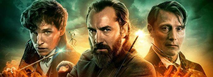 Ralph Fiennes: Wenn Voldemort zurückkehrt, dann nur mit ihm!