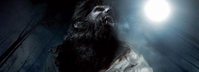 """Universals Monster-Revival: Ryan Gosling wird zum """"Wolfman"""""""