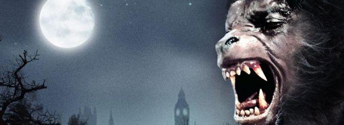 """John Landis deutlich gegen """"American Werewolf""""-Remake - oder?"""
