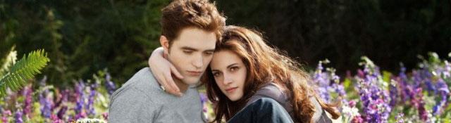 Bild 1:Hier nahm alles seinen Anfang - Twilight