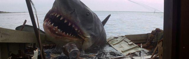 Bild 1:Desaster-Drehs mit Happy End: Wenn Filme doch noch gut werden