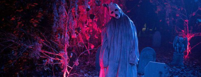 """Bild 1:Zum """"Halloween Haunt""""-Start: Fünf Fakten rund um Halloween!"""