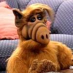 Überirdischer Reboot: Alf blödelt wieder im TV
