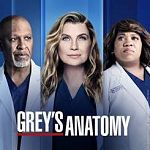 """Grey´s Anatomy"" S15 aufgestockt, ""Homeland"" S8-Setting steht + ""Suits""-Spin-off"