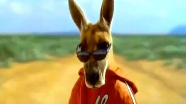 Kangaroo Jack Trailer