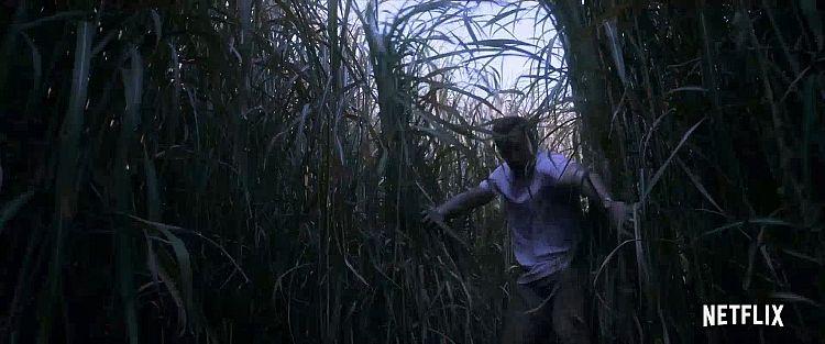 Im hohen Gras Trailer