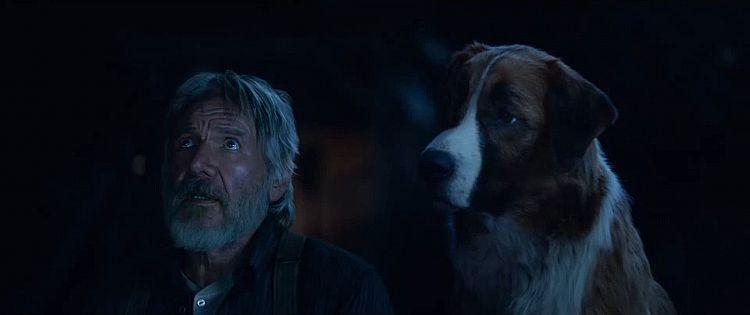 Ruf der Wildnis Trailer