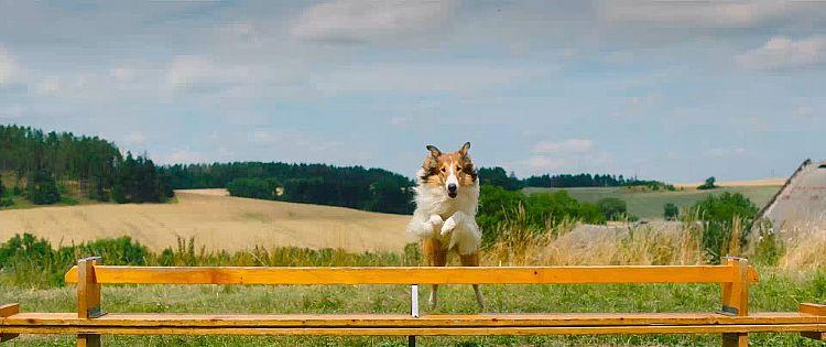 Lassie - Eine abenteuerliche Reise Trailer