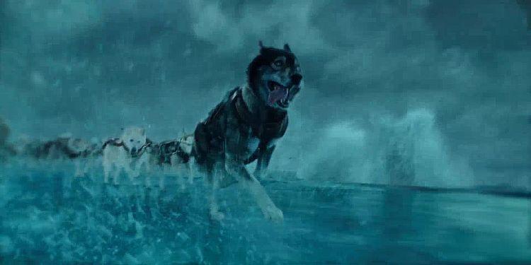 Togo - Der Schlittenhund Trailer