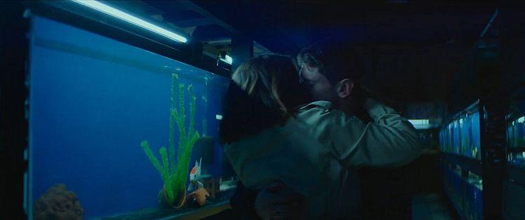 Little Fish Trailer