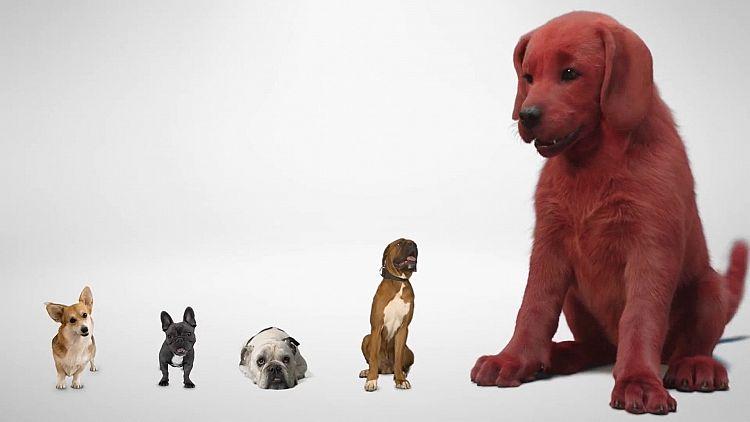 Clifford der große rote Hund Trailer