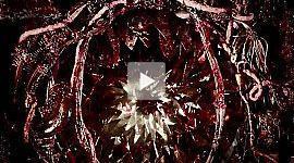 Blood Drive Trailer