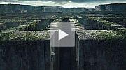 Maze Runner - Die Auserw�hlten im Labyrinth Trailer