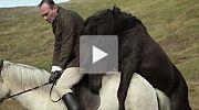 Von Menschen und Pferden Trailer
