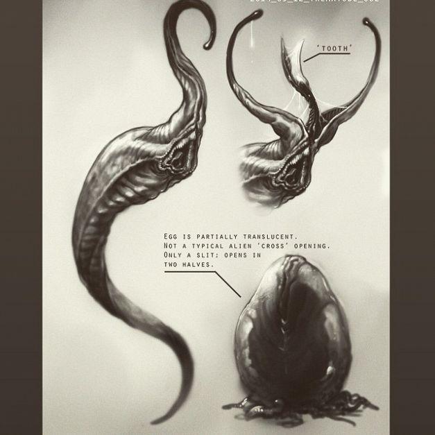 Bild zu Alien 5
