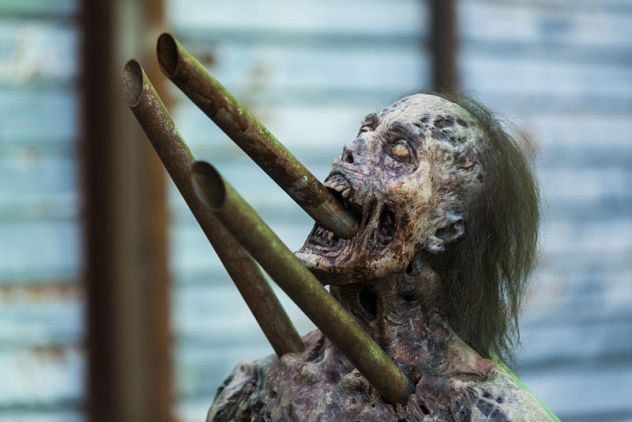 Bilder zu The Walking Dead