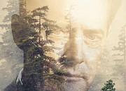 """Filmgalerie zu """"Twin Peaks"""""""