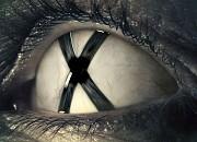 Bild zu Akte X - Die neuen Fälle