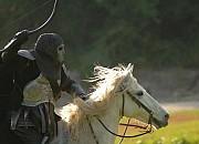 Bild zu Die Reiter der Apokalypse
