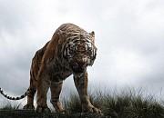 Bild zu The Jungle Book