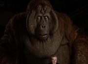 """Filmgalerie zu """"The Jungle Book"""""""