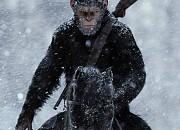 """Filmgalerie zu """"Planet der Affen - Survival"""""""