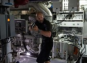 Bilder zu Mechanic 2 - Resurrection