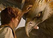 """Filmgalerie zu """"Phantastische Tierwesen und wo sie zu finden sind"""""""
