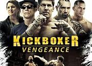 """Filmgalerie zu """"Kickboxer - Die Vergeltung"""""""
