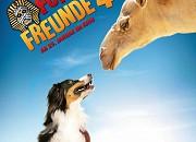 """Filmgalerie zu """"Fünf Freunde 4"""""""