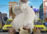 Bild zu Norm - König der Arktis