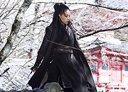 Bild zu The Assassin
