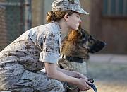 Bild zu Sergeant Rex - Nicht ohne meinen Hund