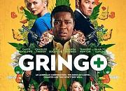 Bild zu Gringo