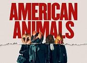 Bild zu American Animals