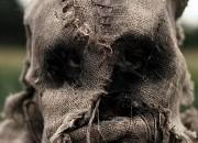 Bild zu Scarecrows