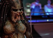 Bild zu Predator - Upgrade