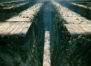 """Filmgalerie zu """"Maze Runner - Die Auserw�hlten im Labyrinth"""""""