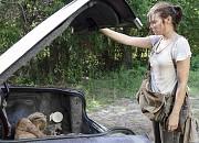 "Filmgalerie zu ""The Walking Dead"""